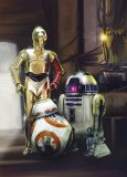 Foto tapeta Star Wars Three Droids 4-447