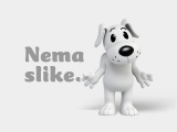 Nike tenisica wmns nike free rn flyknit 831070-307