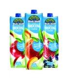 Nektar classic, crni ribizl-nar-jabuka ili jabuka Fructal 1 l