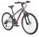 Dječji bicikl X Fact Mission ili Mission Girl 24