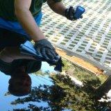 Usluga nanošenje Nano/keramičke zaštite laka - SUV/monovolumen