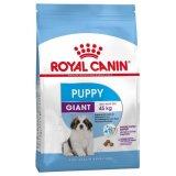 Royal Canin Shn Giant Puppy (od 2 - 8 mjeseci starosti)