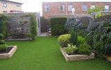 Umjetna trava ARENA