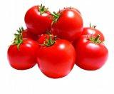 Rajčica Grapolo 1 kg