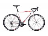 Bicikl CTM Blade 1.0